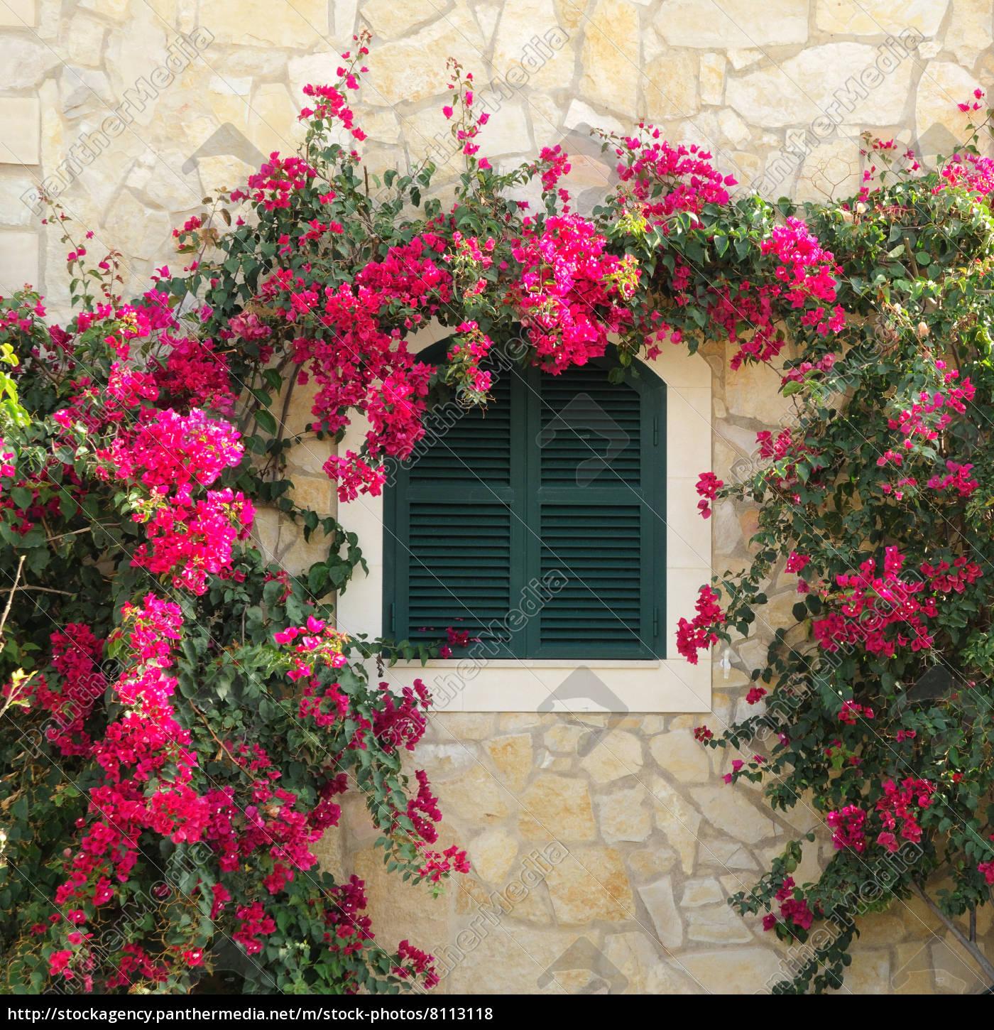 Verführerisch Mediterranes Haus Foto Von Stock Photo 8113118 - Mit Fensterladen Und