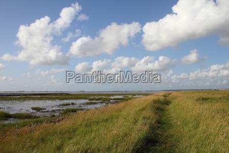 landschaft an der nordsee