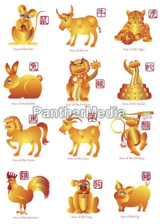 chinese twelve zodiac animals illustration