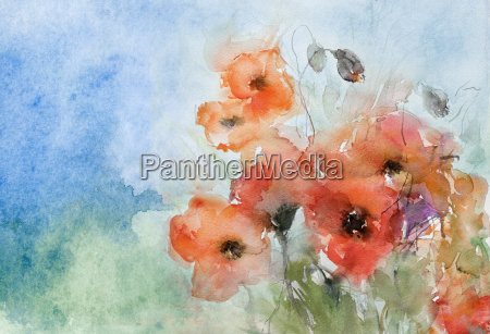 watercolor poppies caps with