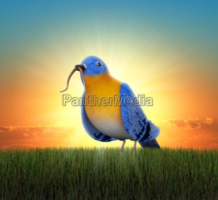 frueher vogel