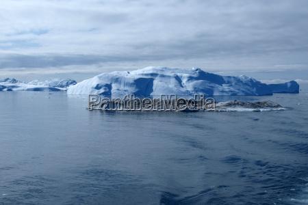 eisberg westkueste groenlands im sommer