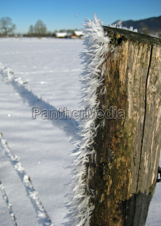 winter stream ice teasel fence fence