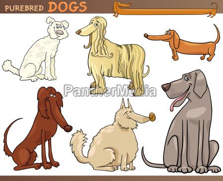 hund illustration vorstehhund cartoon veranschaulichung zeichentrickfilm