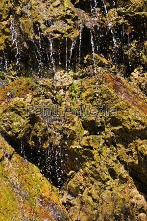waters stream source sponge spring water