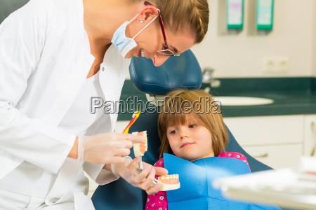 zahnaerztin mit zahnbuerste gebiss und patientin