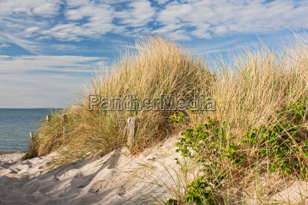 way to the beach by dunes