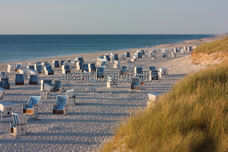 beach with beach chairs in kampen