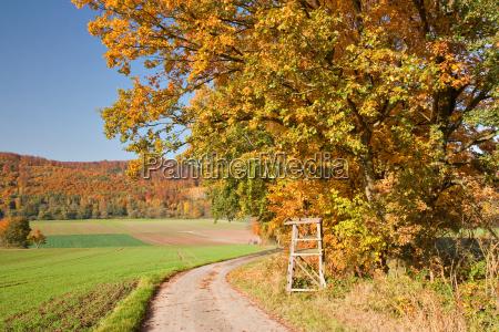 autumn in weserbergland
