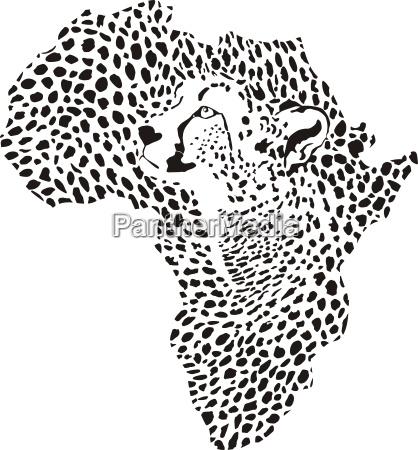 afrika in einem geparden camouflage