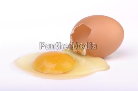 rohes aufgeschlagenes ei