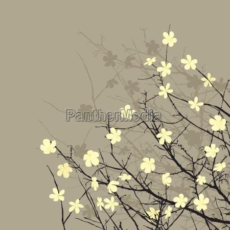 floral background retro