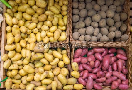verschiedene sorten kartoffeln