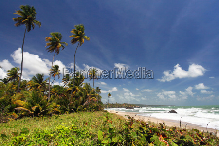 rampanalgas bay trinidad hohe farbsaettigung