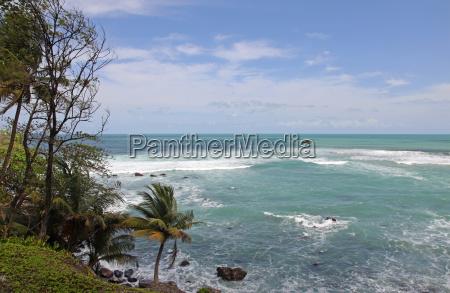 matelot bay trinidad