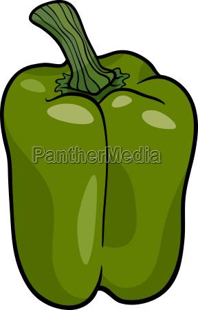 green pepper vegetable cartoon illustration