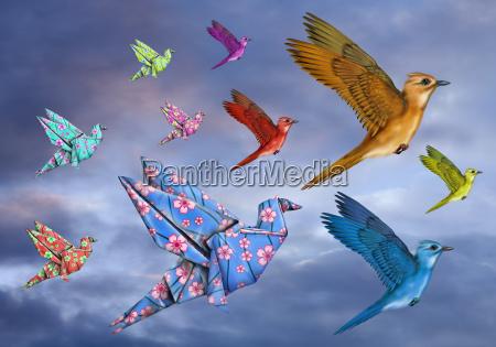 origami vogel dreams
