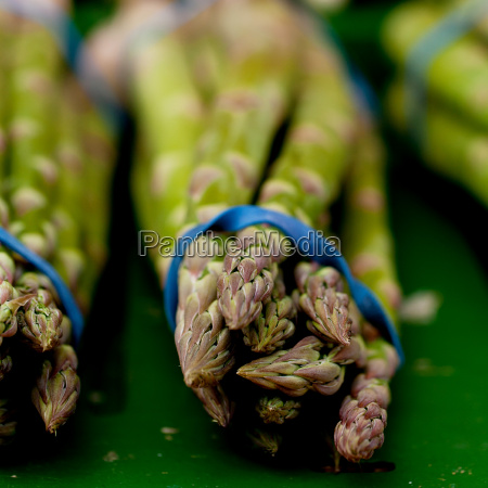 fresh delicious white and green asparagus