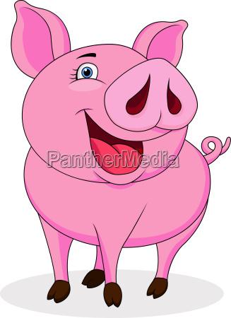 lustige schweinkarikatur