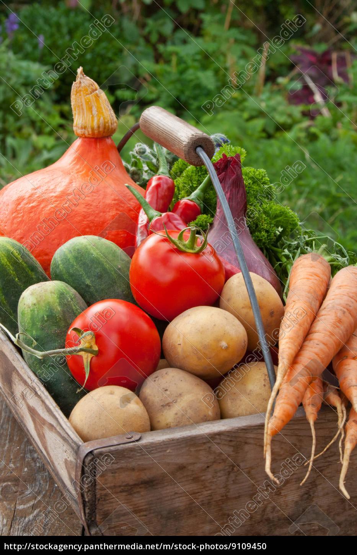 orange, apfelsine, pomeranze, essen, nahrungsmittel, lebensmittel - 9109450