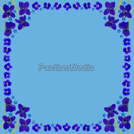 rahmen mit blauen blumen im quadrat