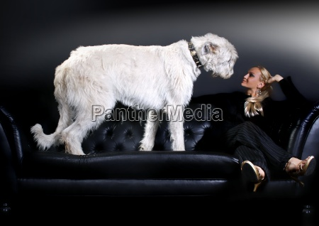 young woman irish wolfhound on