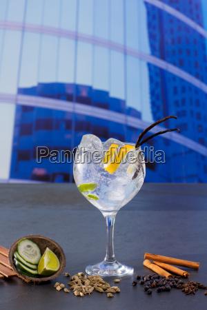 gin tonic cocktail mit gewuerzen in