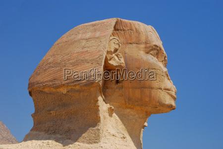 sphinx kopf seitenansicht