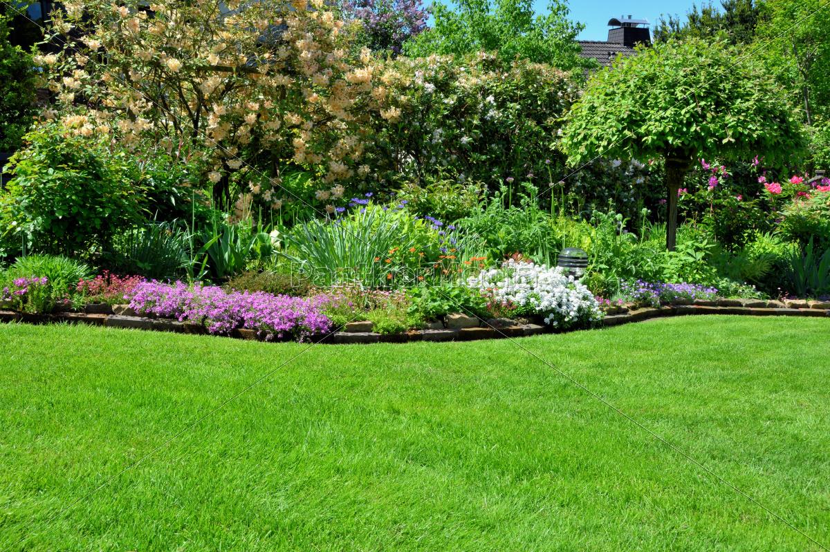 Rasen Mit Hintergrund Garten Stock Photo 9366982 Bildagentur
