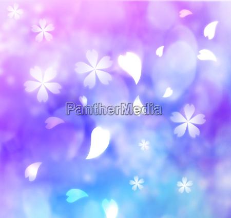 flower petal purple blue pink background