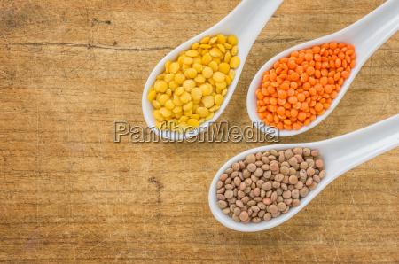 various types of lentils in porcelain