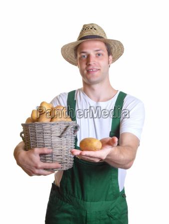 freundlicher gaertner zeigt seine kartoffel