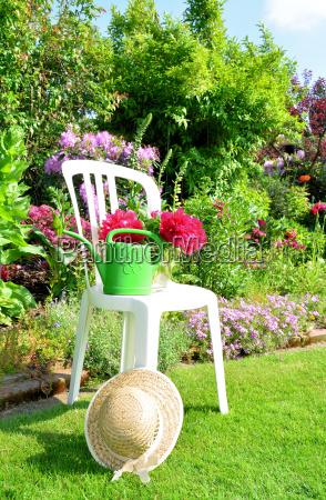 in the summer garden