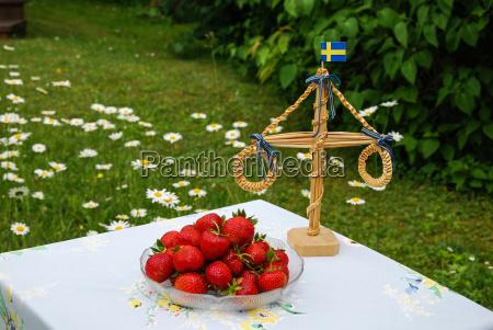 erdbeeren im hochsommer