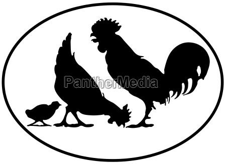 silhouette einer huehnerfamilie freigestellte vektorgrafik