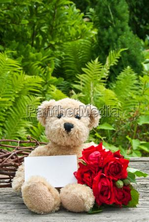 roses rose red green teddy bear