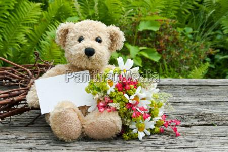 daisy daisies green teddy bear teddy