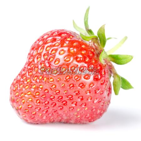erdbeere isoliert vor weiss
