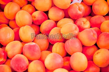 frische suesse pfisiche aprikosen auf dem