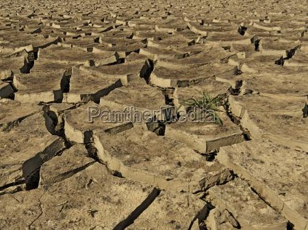 environment enviroment bavaria dryness climate germany