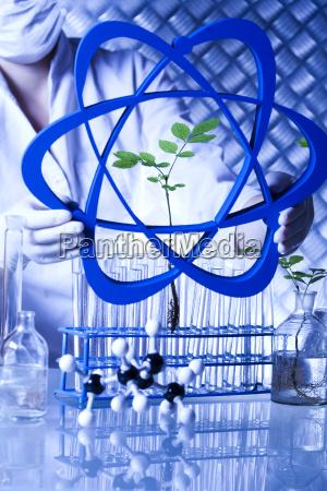 laborglas gentechnisch veraenderte pflanzen