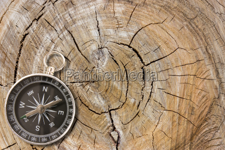 compass on the old stump