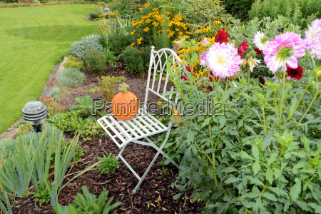 autumnal garden with chair and flowers