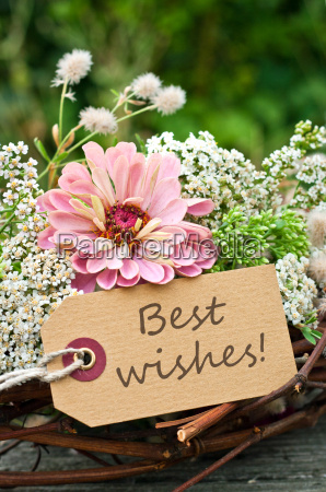 congratulate congratulations all the best wish