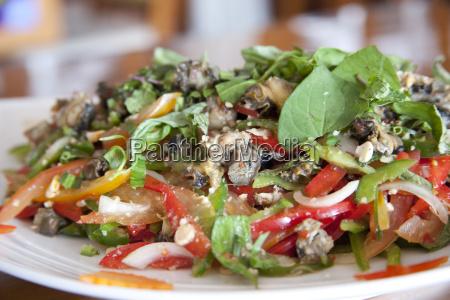 asian salat