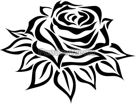 rose trauer siluette kontur einfach bluete