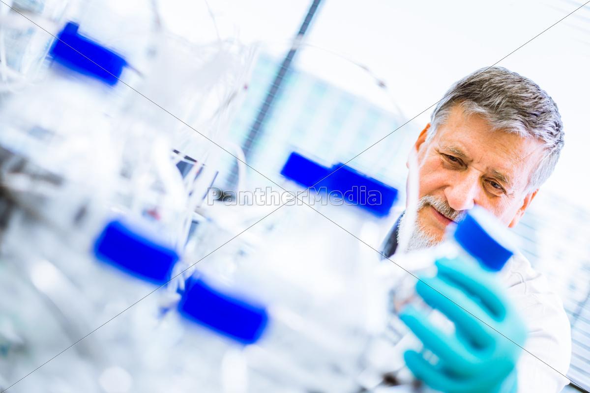 senior, männlichen, forscher, wissenschaftlicher, forschung, in - 10147287