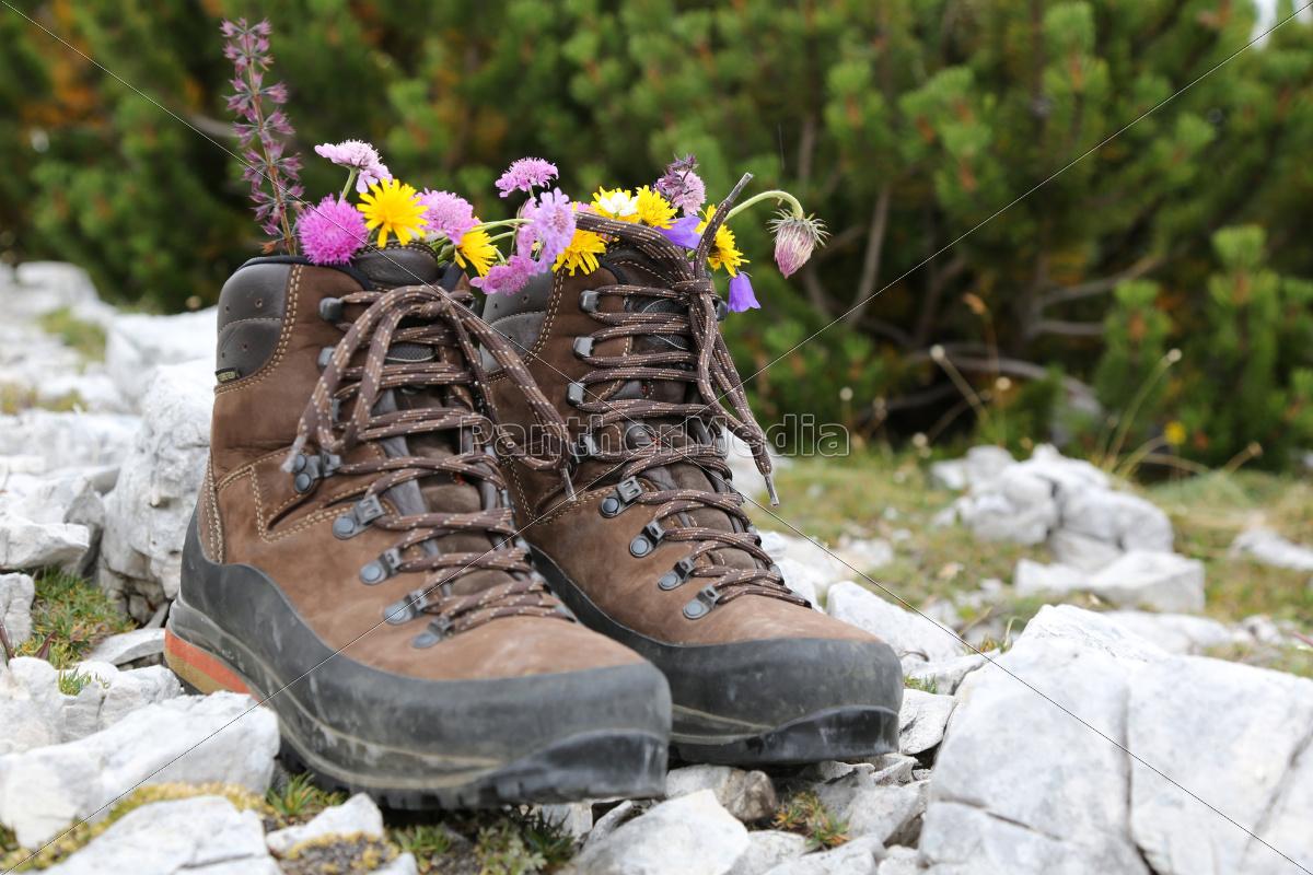 Lizenzfreies Bild 10296965 Wanderschuhe mit Blumen in den Bergen