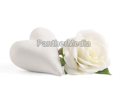 weisse rose mit herz