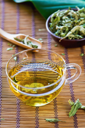 verveine, tee, oder, verbena, tea - 10337405